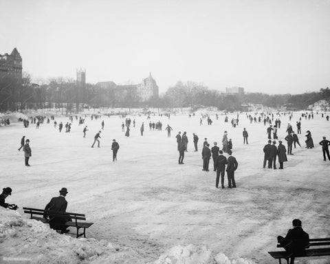 Ice Skating Central Park New York Vintage 8x10 Reprint Of Old Photo - Photoseeum