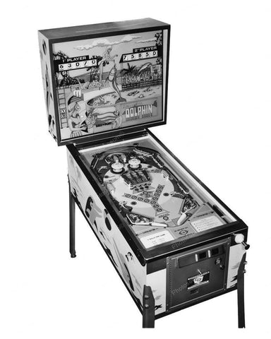 Chicago Coin Dolphin Pinball Machine 8x10 Reprint Of Old Photo