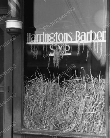 Harringtons Barber Shop Window Vintage 8x10 Reprint Of Old Photo
