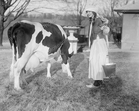 Dutch Girl Preparing To Milk Cow Viintage 8x10 Reprint Of Old Photo - Photoseeum