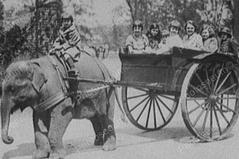 Young Boy Rides Elephant Pulling Wagon! 4x6 Reprint Of Old Photo - Photoseeum