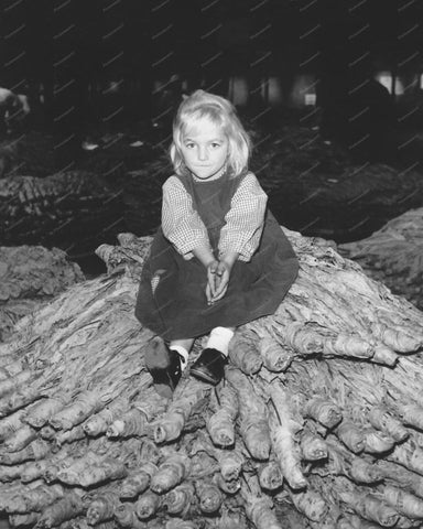 Beautful Young Girl Sitting On Tree Trunk 8x10 Reprint Of Old Photo