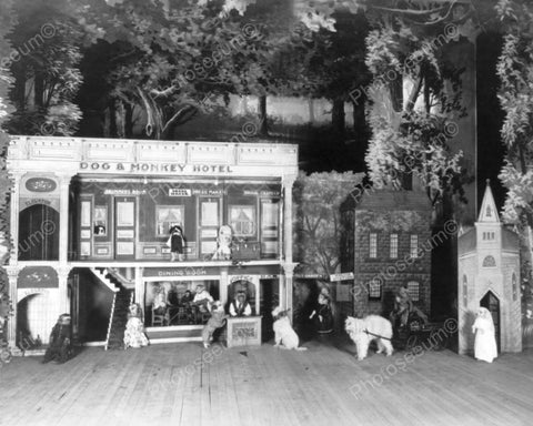 Dog & Monkey Hotel Scene! 1900s 8x10 Reprint Of Old Photo - Photoseeum