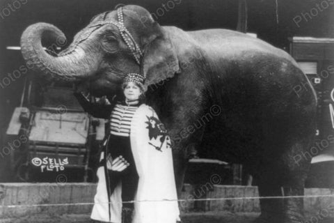 Circus Female Trainer with Elephant 1910s 4x6 Reprint Of Old Photo