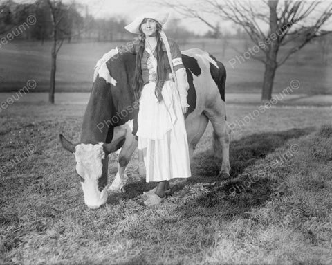 Dutch Girl With Favourite Cow Vintage 8x10 Reprint Of Old Photo