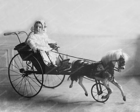 Baby In Antique Toy Horse  Baby Carriage 8x10 Reprint Of Old Photo