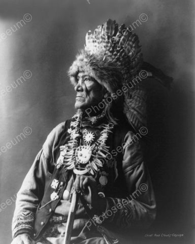 Chief Red Cloud 1901 Vintage 8x10 Reprint Of Old Photo