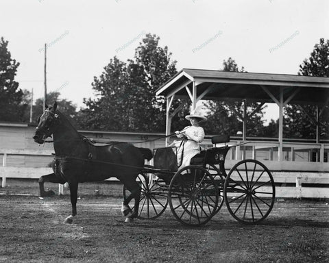 Women Harness Racing 1912 8x10 Reprint Of Old Photo