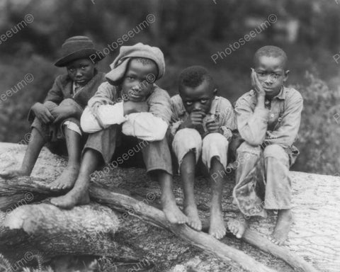 Black Young Boys Outdoor Portrait  8x10 Reprint Of Old Photo - Photoseeum