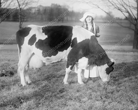 Dutch Girl With Pet Cow Vintage 8x10 Reprint Of Old Photo
