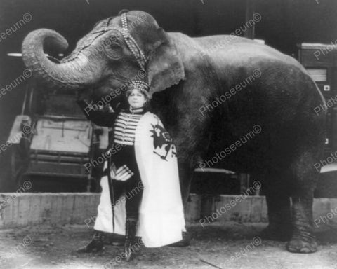 Elephant Circus Act 1916 Vintage 8x10 Reprint Of Old Photo