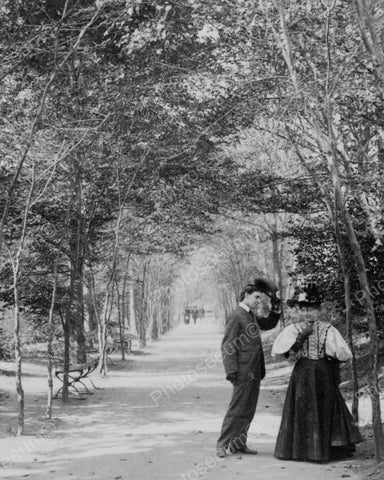 Lovers Lane Central Park New York Vintage 8x10 Reprint Of Old Photo - Photoseeum