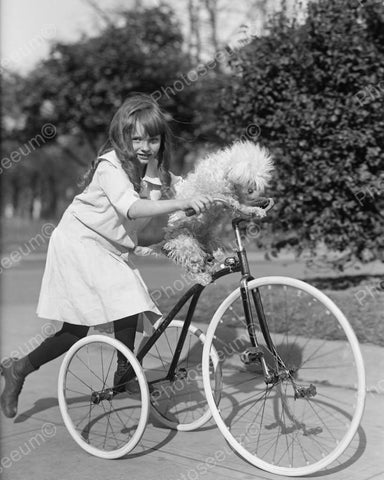 Girl With Dog On Tricycle 1917 Vintage 8x10 Reprint Of Old Photo 2