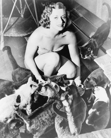 Bathing Suit Beauty Feeds Cats 8x10 Reprint Of Old Photo