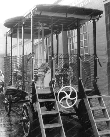 Antique Carousel Wagon New York & Horses 8x10 Reprint Of Old Photo
