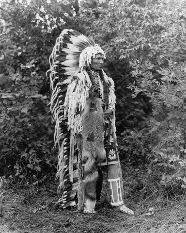 Chief Umapine An Indian 1900s Vintage 8x10 Reprint Of Old Photo