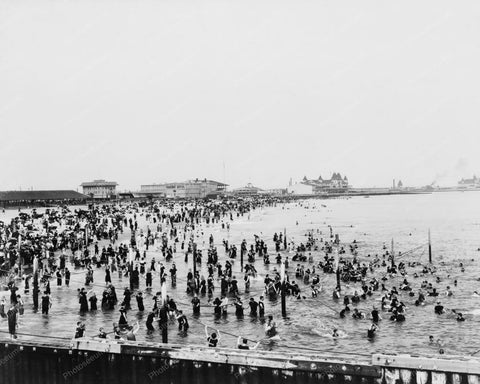 Bathing At Coney Island Beach 1900s 8x10 Reprint Of Old  Photo