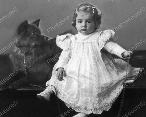 Cute Girl With Her Dog Vintage 8x10 Reprint Of Old Photo