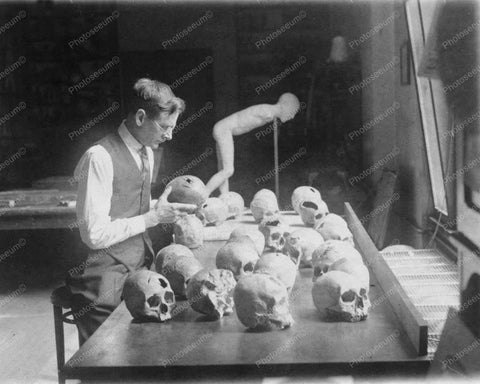 Doctor Examines Skulls 1920s Vintage 8x10 Reprint Of Old Photo