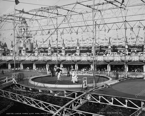 Circus Rings Luna Park Coney Island 1905 Vintage 8x10 Reprint Of Old Photo