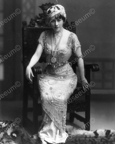 Lady In Jewelled Gown & Hat 1900s  8x10 Reprint Of Old Photo