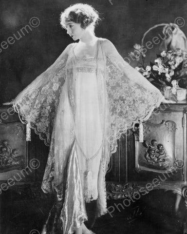 Elegant Lady In Chiffon Lace Gown 1920s 8x10 Reprint Of Old Photo - Photoseeum