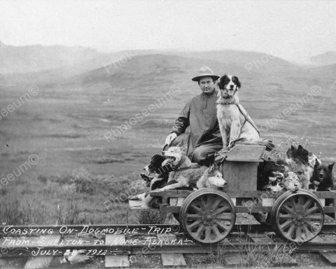 Dogmobile To Alaska 1912 Vintage 8x10 Reprint Of Old Photo - Photoseeum