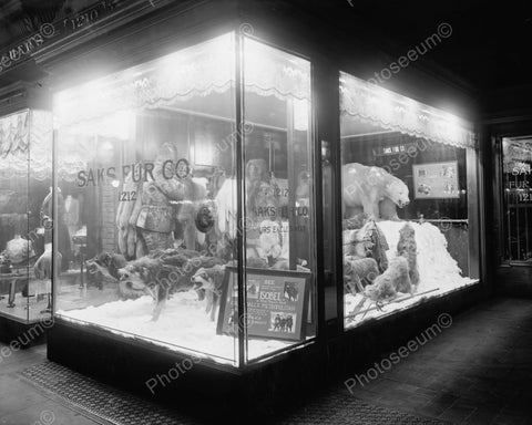 Saks Fur Co Window Display & Wolves 1900 8x10 Reprint Of Old Photo