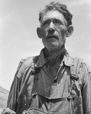 Farmer Looking At Crops 1939 Vintage 8x10 Reprint Of Old Photo