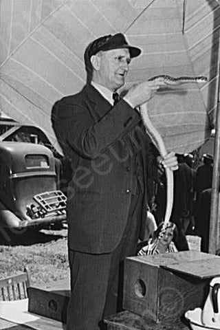 California Carnival Snake Charmer 4x6 Reprint Of 1940s Old Photo