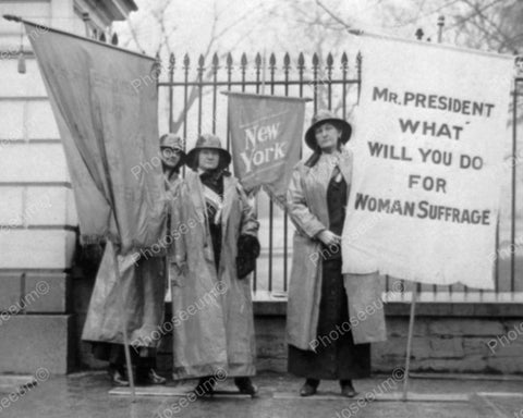 Mr Pres What Will You Do Woman Suffrage 1917 Vintage 8x10 Reprint Of Old Photo