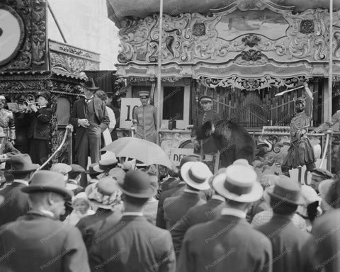 Coney Island Dreamland Wild Animal Show 8x10 Reprint Of Old  Photo