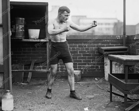 Boxer In Pose 1924 Vintage 8x10 Reprint Of Old Photo