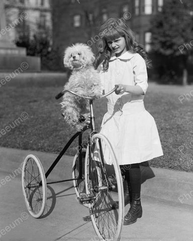 Girl With Dog On Tricycle 1917 Vintage 8x10 Reprint Of Old Photo 3