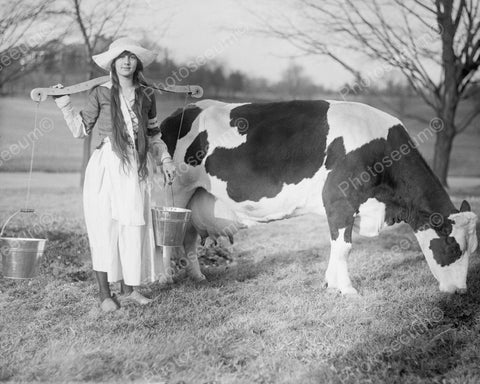 Dutch Girl Milking Cow Vintage 8x10 Reprint Of Old Photo