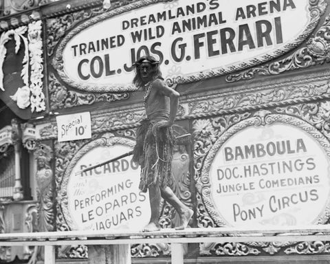Coney Island Dreamland Animal Show 8x10 Reprint Of Old  Photo