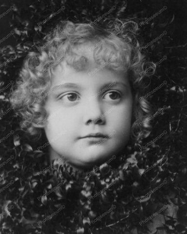 Cutie Pie Girl In Classic Portrait 8x10 Reprint Of Old Photo - Photoseeum