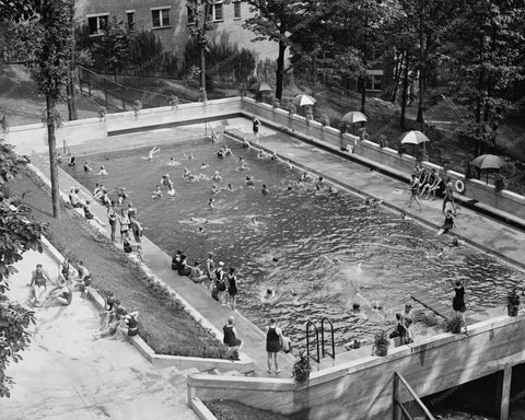 Wardman Park Swimming Pool 1920s Vintage 8x10 Reprint Of Old Photo