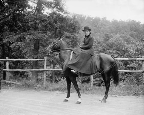 Equestrian Lady Rides Horse In Skirt! 8x10 Reprint Of Old Photo