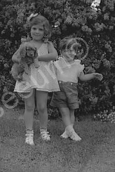 Adorable Children With Dog 1930s Old 4x6 Reprint Of Photo - Photoseeum