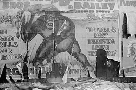 Barnum & Bailey Circus Poster 1930s 4x6 Reprint Of Old Photo - Photoseeum