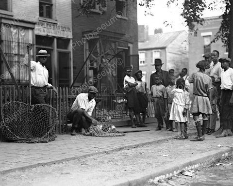 Dog Catcher W Dog In Net & Black Crowd 8x10 Reprint Of Old Photo - Photoseeum