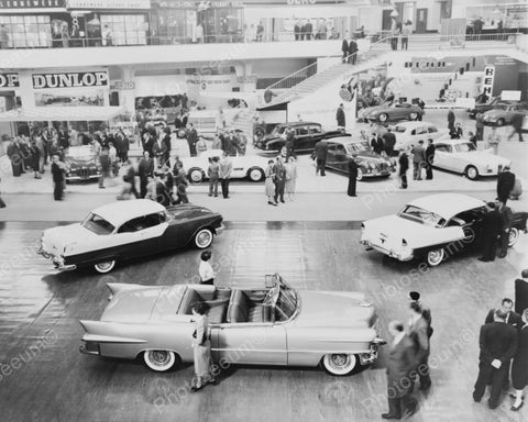 Automobile Car Show Scene 1950s 8x10 Reprint Of Old Photo