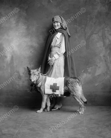 Nurse With Red Cross Dog 1940s Vintage 8x10 Reprint Of Old Photo