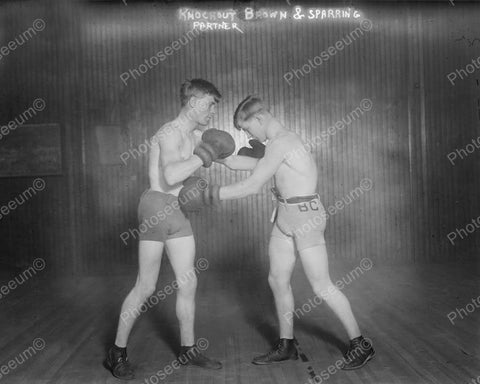 Boxing Knockout Brown Sparring Partner Vintage 8x10 Reprint Of Old Photo