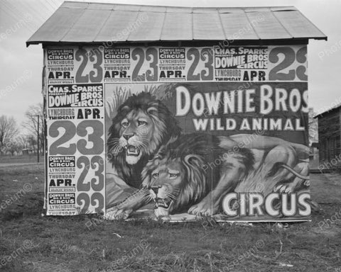 Downie Bros Circus Billboard Vintage 8x10 Reprint Of Old Photo
