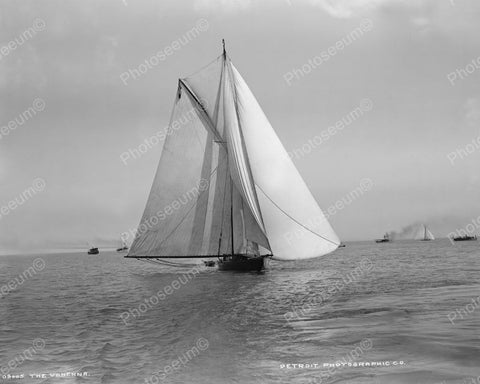 Vanenna Racing Sailboat 1890 Vintage 8x10 Reprint Of Old Photo