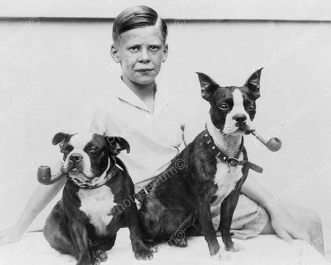 Boy With Smoking Boston Terrier Dogs! Vintage 8x10 Reprint Of Old Photo