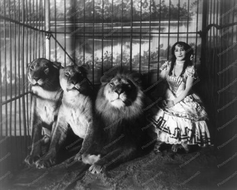 Victorian Lady In Cage with Lions 8x10 Reprint Of Old Photo