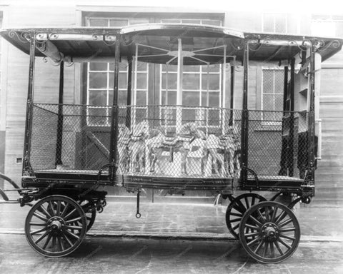 Antique Carousel Wagon New York 1800s 8x10 Reprint Of Old Photo